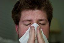 katar, alergia
